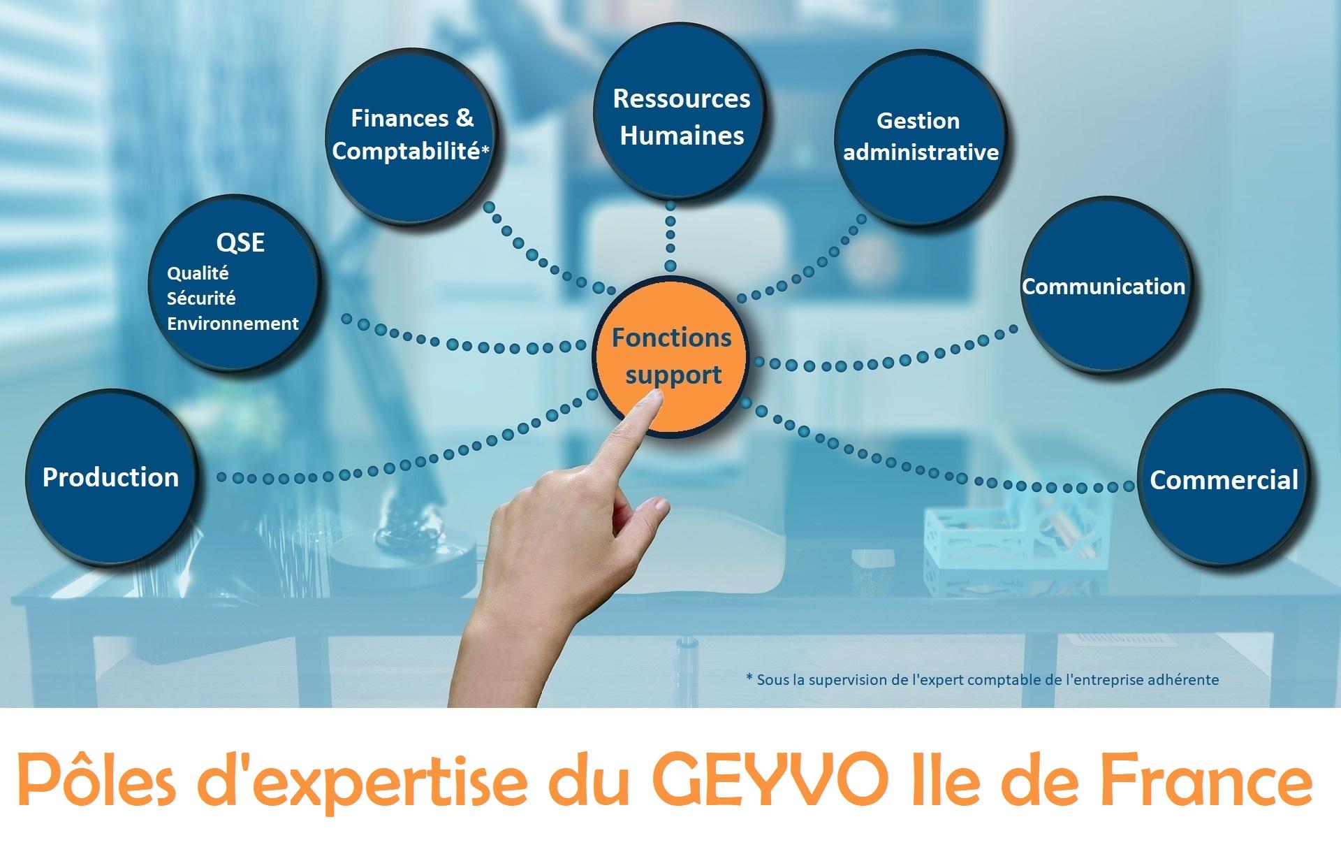 Pôles d'expertise du GEYVO Ile de France